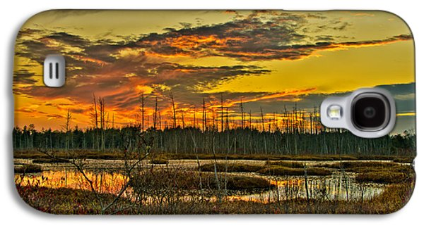 An November Sunset In The Pines Galaxy S4 Case