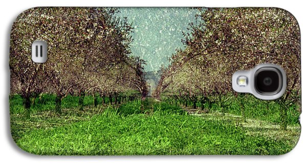 An Orchard In Blossom In The Eila Valley Galaxy S4 Case