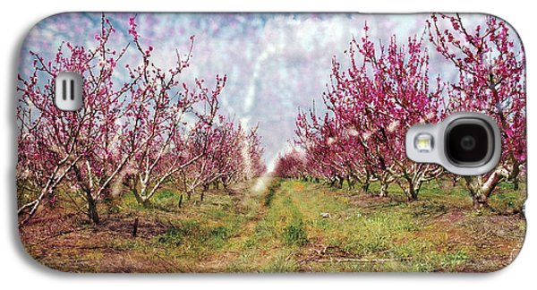 An Orchard In Blossom In The Golan Heights Galaxy S4 Case