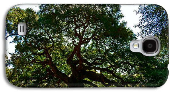 Angel Oak Tree 2004 Galaxy S4 Case