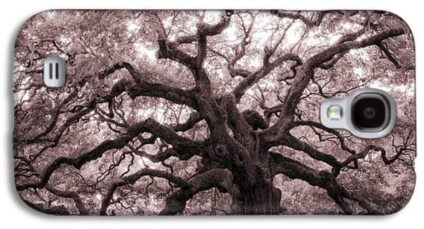 Angel Oak Tree Galaxy S4 Case by Dustin K Ryan
