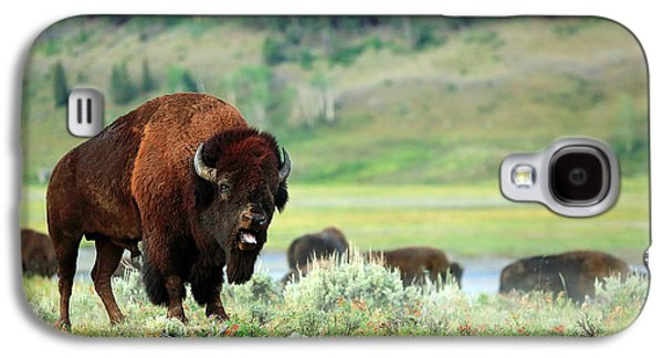 Angry Buffalo Galaxy S4 Case by Todd Klassy