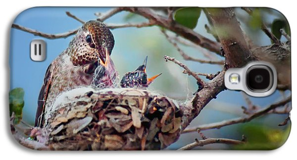 Anna's Hummingbirds Galaxy S4 Case by Nikolyn McDonald