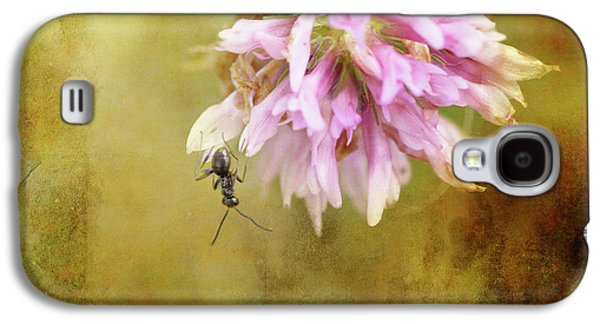 Ant Galaxy S4 Case - Ant Acrobatics by Susan Capuano