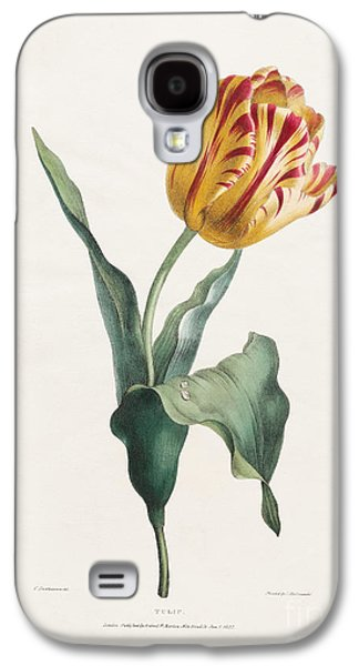 Antique Tulip Print Galaxy S4 Case by Valentine Bartholomew