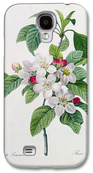 Apple Blossom Galaxy S4 Case by Pierre Joseph Redoute