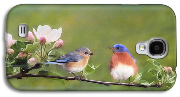 Apple Blossoms And Bluebirds Galaxy S4 Case