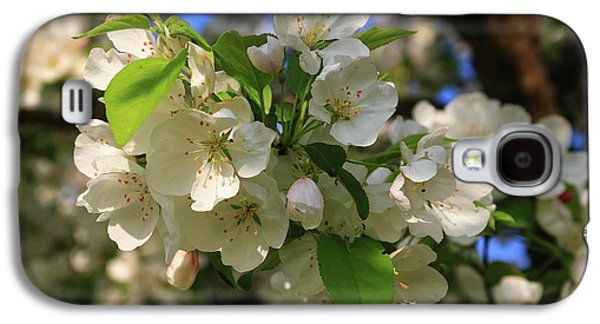 Apple Blossoms  Galaxy S4 Case by Laurie Breton