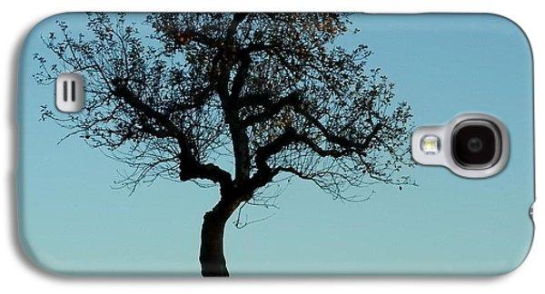 Apple Tree In November Galaxy S4 Case