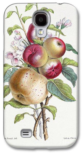 Apple Tree Galaxy S4 Case by JB Pointel du Portail