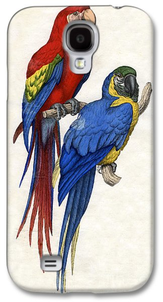 Aracangua And Blue And Yellow Macaw Galaxy S4 Case