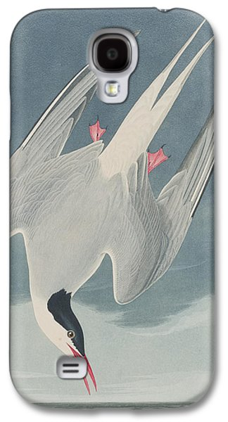 Arctic Tern Galaxy S4 Case by John James Audubon