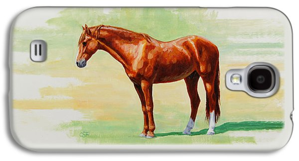 Roasting Chestnut - Morgan Horse Galaxy S4 Case
