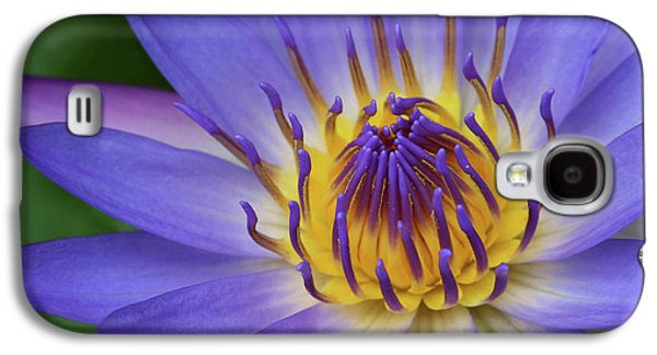 The Lotus Flower Galaxy S4 Case