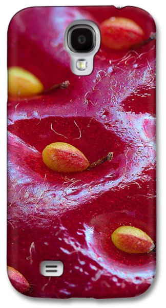 Strawberry Fields Galaxy S4 Case