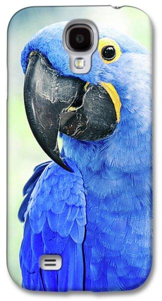Beauty Is An Enchanted Soul Galaxy S4 Case