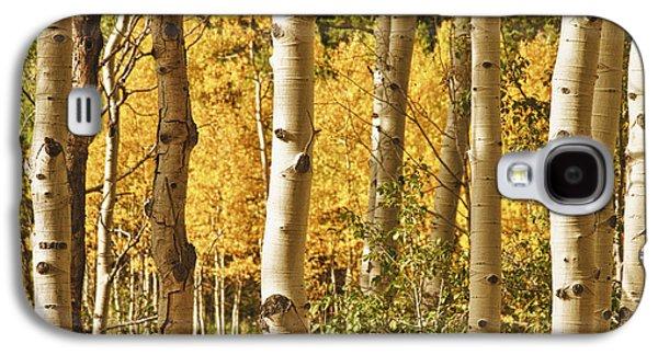 Aspen Gold Galaxy S4 Case by James BO  Insogna