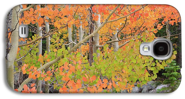 Galaxy S4 Case featuring the photograph Aspen Stoplight by David Chandler