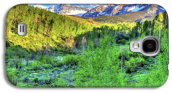 Aspen View Galaxy S4 Case