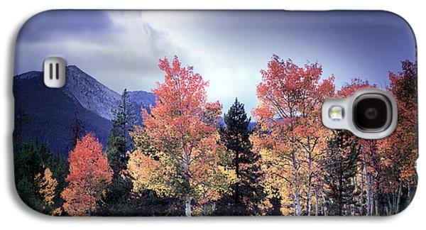 Aspens In Autumn Light Galaxy S4 Case by Leland D Howard
