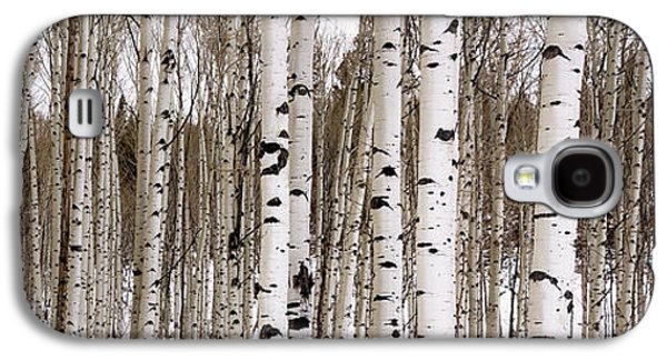 Aspens In Winter Panorama - Colorado Galaxy S4 Case