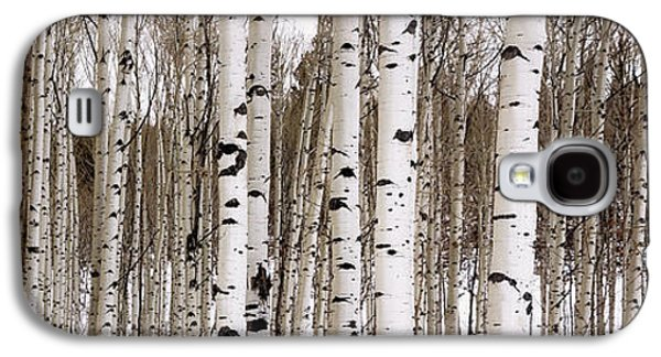 Travel Galaxy S4 Case - Aspens In Winter Panorama - Colorado by Brian Harig