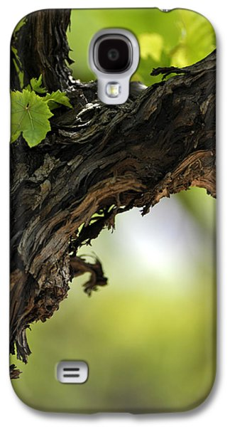 Galaxy S4 Case featuring the photograph At Lachish Vineyard by Dubi Roman