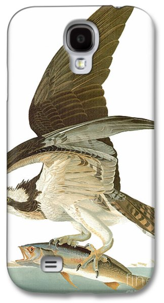 Osprey Galaxy S4 Case - Audubon: Osprey by Granger