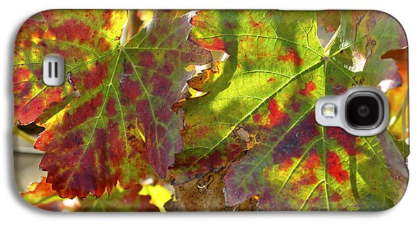 Galaxy S4 Case featuring the photograph Autumn At Lachish Vineyards 2 by Dubi Roman