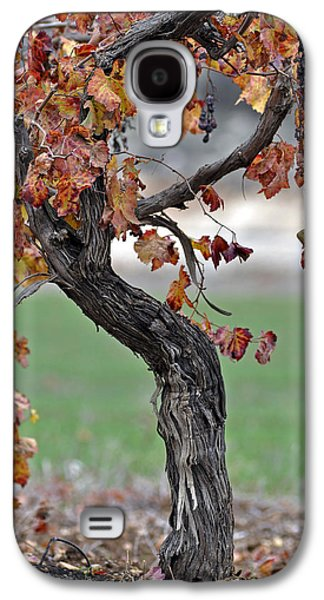 Galaxy S4 Case featuring the photograph Autumn At Lachish Vineyards 3 by Dubi Roman