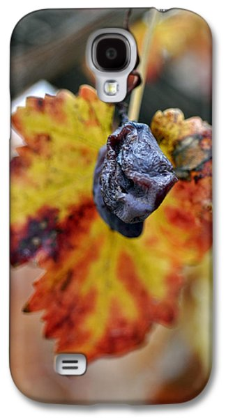 Galaxy S4 Case featuring the photograph Autumn At Lachish Vineyards 5 by Dubi Roman