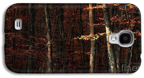 Autumn Branch Galaxy S4 Case by Svetlana Sewell