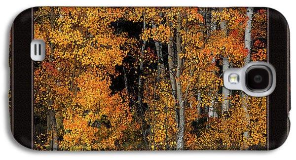 Autumn Brilliance Triptych Galaxy S4 Case