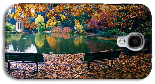 Autumn Color Trees And Fallen Leaves Galaxy S4 Case
