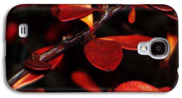 Autumn Details Galaxy S4 Case