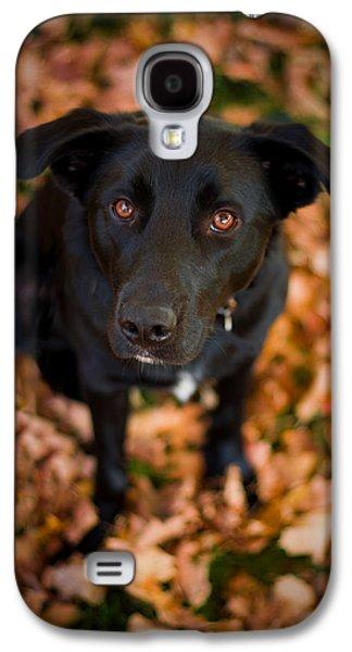 Autumn Dog Galaxy S4 Case