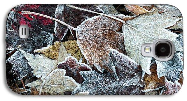 Autumn Ends, Winter Begins 1 Galaxy S4 Case