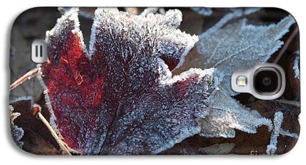 Autumn Ends, Winter Begins 2 Galaxy S4 Case