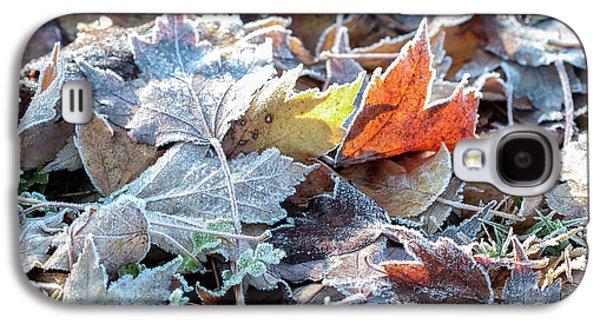 Autumn Ends, Winter Begins 3 Galaxy S4 Case