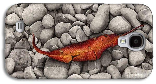 Autumn Epilogue Galaxy S4 Case by Hailey E Herrera