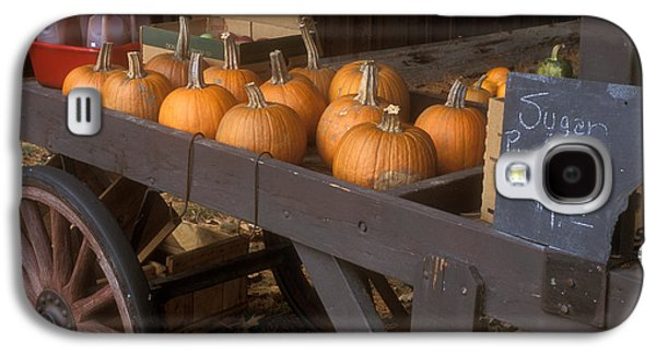 Autumn Farmstand Galaxy S4 Case by John Burk