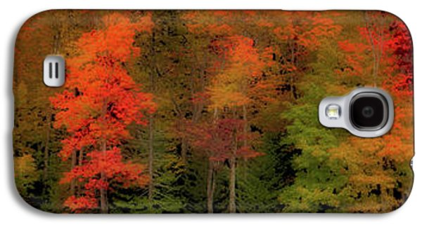 Autumn Fence Line Galaxy S4 Case by David Patterson