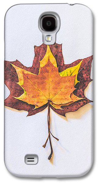 Autumn Fire Galaxy S4 Case by Kate Morton