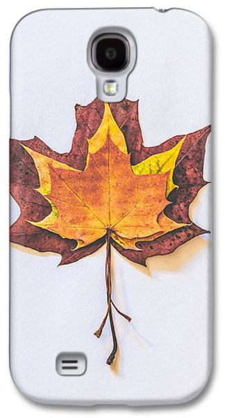 Autumn Fire Galaxy S4 Case