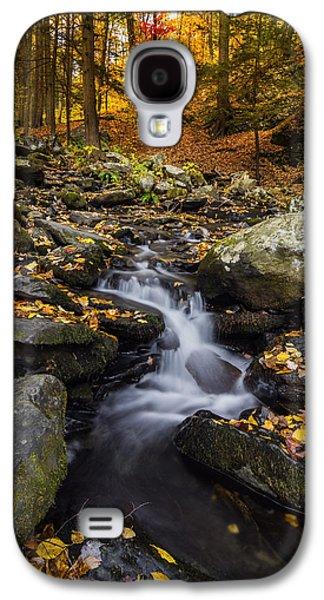 Autumn Glory At Bushkill Falls State Park Pennsylvania Usa Galaxy S4 Case