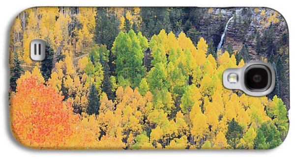 Autumn Glory Galaxy S4 Case by David Chandler