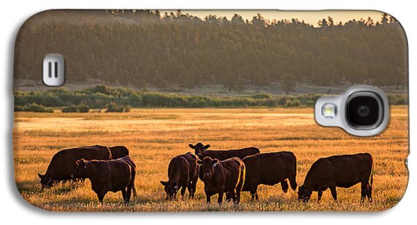 Autumn Herd Galaxy S4 Case by Todd Klassy