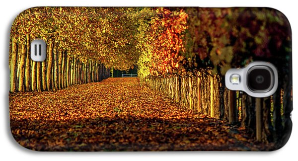 Autumn In Napa Valley Galaxy S4 Case