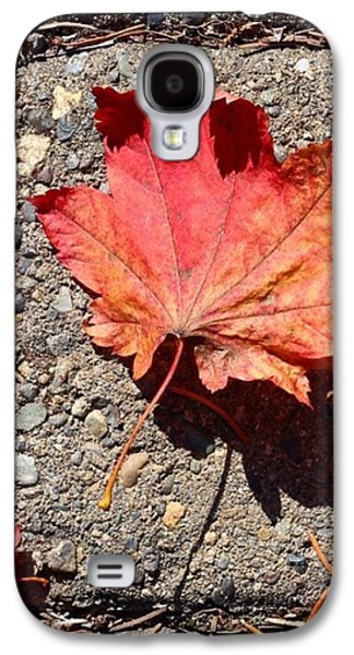 Orange Galaxy S4 Case - Autumn Is Here by Blenda Studio