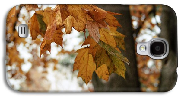 Autumn Leaves 2- By Linda Woods Galaxy S4 Case by Linda Woods